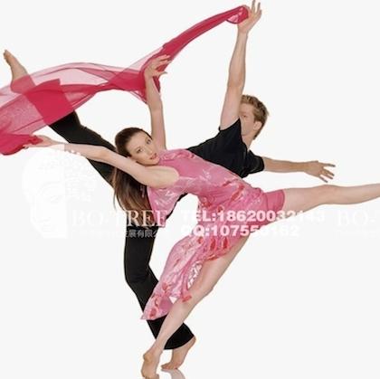 外籍现代舞